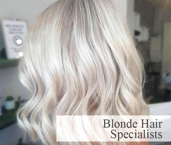 Blonde Hair Colour Experts
